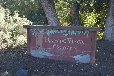 Vista Single Family Home For Sale: 968 Mimosa
