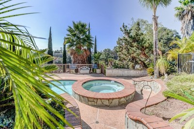 El Cajon Single Family Home For Sale: 4919 New Ranch Rd.