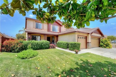 Wildomar Single Family Home For Sale: 35837 Frederick St.