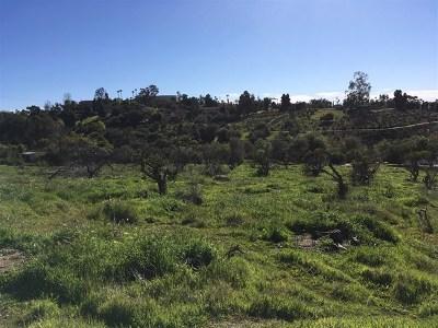 Fallbrook Residential Lots & Land For Sale: Riverview Dr@mr Ranch 70-Parcel 2