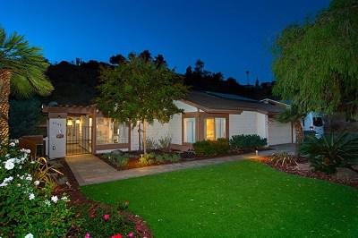 Spring Valley Single Family Home For Sale: 4348 Avenida Gregory