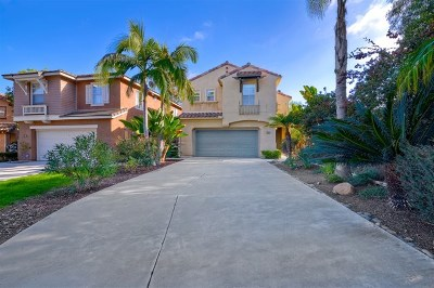 Carlsbad Single Family Home For Sale: 6898 Via Borregos