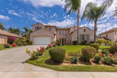 Escondido Single Family Home For Sale: 1105 Amelia Pl