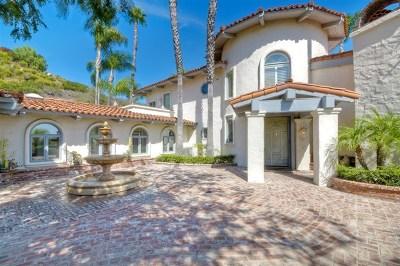 Escondido Single Family Home For Sale: 30639 Camino De Las Lomas