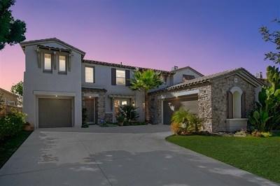 Chula Vista Single Family Home For Sale: 1016 Mountain Ash Ave