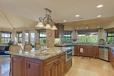 Fallbrook Single Family Home For Sale: 158 Lake Ridge Circle