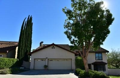 Escondido Single Family Home For Sale: 731 Inspiration Ln