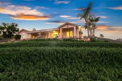 El Cajon Single Family Home For Sale: 1552 Mountain View Road