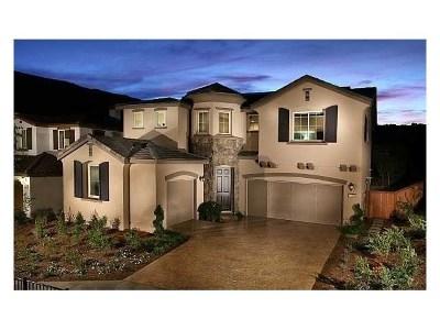 San Marcos Single Family Home For Sale: 905 Terraza Mar
