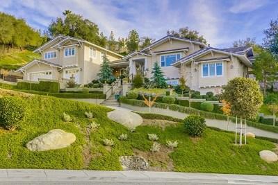 Escondido Single Family Home For Sale: 751 Gretna Green Way