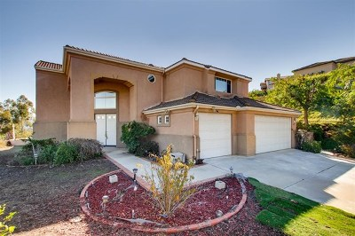 Escondido Single Family Home For Sale: 1311 Northview Rd