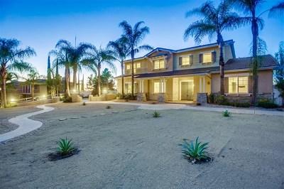 Escondido Single Family Home For Sale: 2841 Glenview Way