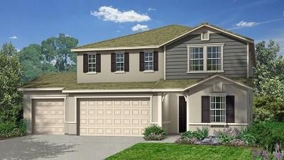 Escondido Single Family Home For Sale: 609 Lehner Ave