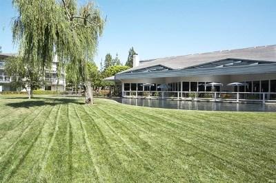 San Marcos Condo/Townhouse For Sale: 1616 Circa Del Lago #C108