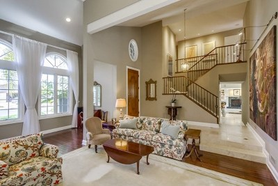 Encinitas Single Family Home For Sale: 927 Passiflora