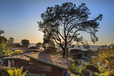 Del Mar Single Family Home For Sale: 422 Culebra