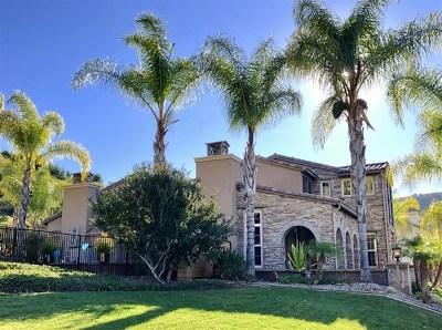 Escondido Single Family Home For Sale: 2706 Vistamonte Gln