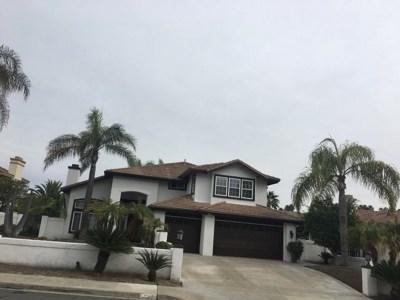 Chula Vista Single Family Home For Sale: 463 Acero Place