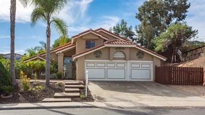 Vista Single Family Home For Sale: 1156 La Tortuga Dr