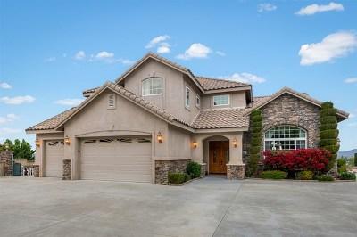 Escondido Single Family Home For Sale: 1721 Sal Glen
