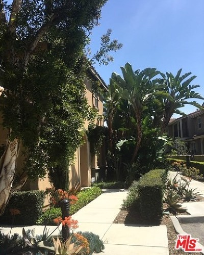 Orange Condo/Townhouse For Sale: 246 W Cork Tree Drive