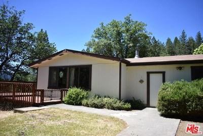 Hayfork Single Family Home For Sale: 477 Kellogg Gulch Road