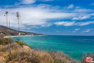 Malibu Condo/Townhouse For Sale: 6489 Kanan Dume Road