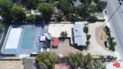 Winnetka Single Family Home For Sale: 20737 Parthenia Street