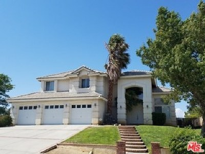 Lancaster Single Family Home For Sale: 7357 Round Hill Drive