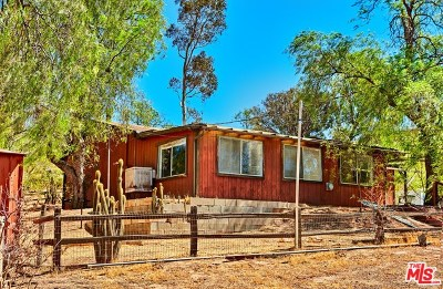 Agua Dulce Single Family Home For Sale: 11258 Mint Canyon Road