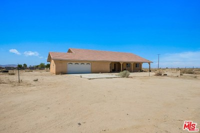 Palmdale Single Family Home For Sale: 38744 92nd Street
