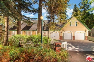 Lake Arrowhead Single Family Home For Sale: 263 Squirrel Drive