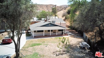 Agua Dulce Single Family Home For Sale: 16166 Sierra Highway Highway