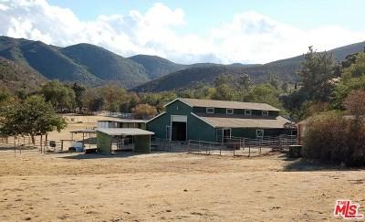 Leona Valley Single Family Home For Sale: 10650 Leona Avenue