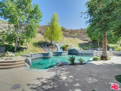 Canyon Country Single Family Home For Sale: 16108 Comet Way