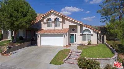 Saugus Single Family Home For Sale: 29010 Shadow Valley Lane