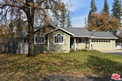 Hayfork Single Family Home For Sale: 197 Highland Drive