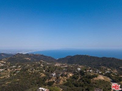 Topanga Single Family Home For Sale: 21530 Saddle Peak Road