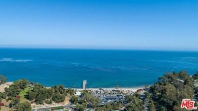 Malibu Single Family Home For Sale: 6236 Ramirez Mesa Drive