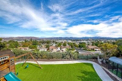 El Cajon Single Family Home For Sale: 735 Mundy Terrace