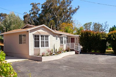 Escondido Single Family Home For Sale: 1052 Metcalf Street