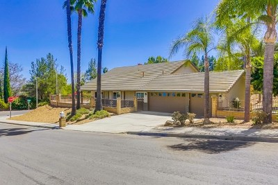 Fallbrook Single Family Home For Sale: 322 Merida Dr