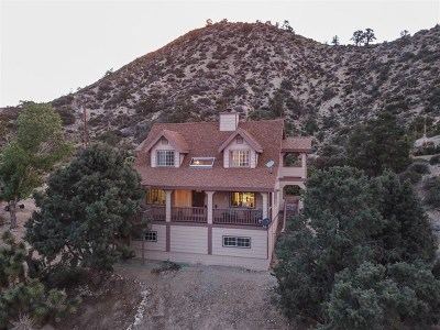 Wrightwood Single Family Home For Sale: 1736 Desert Front Rd