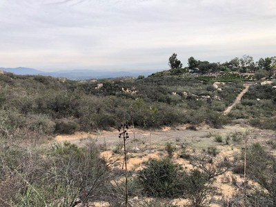 Fallbrook Residential Lots & Land For Sale: Donnil Lane