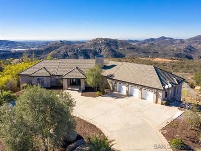 Escondido Single Family Home For Sale: 28039 High Vista Dr