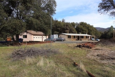 Ahwahnee Single Family Home For Sale: 45691 Carter Creek Road