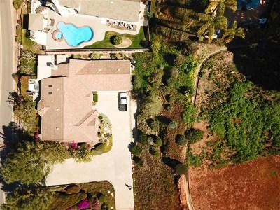 Vista Single Family Home For Sale: 1580 Alta Vista Drive
