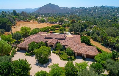 Fallbrook Single Family Home For Sale: 3903 Limber Pine Rd
