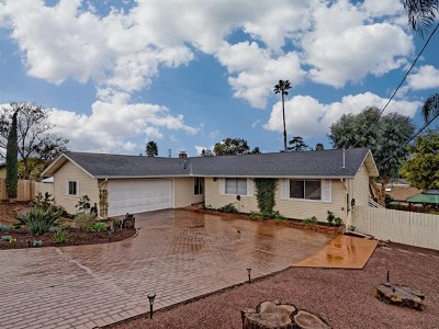 Fallbrook Single Family Home For Sale: 920 Hillpark Ln.