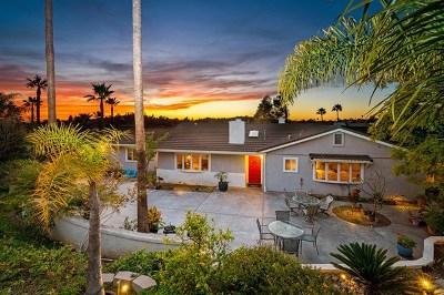 El Cajon Single Family Home For Sale: 1413 Hidden Mesa View Dr